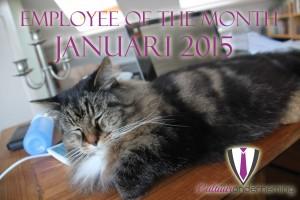 Miko is de medewerker van de maand Januari